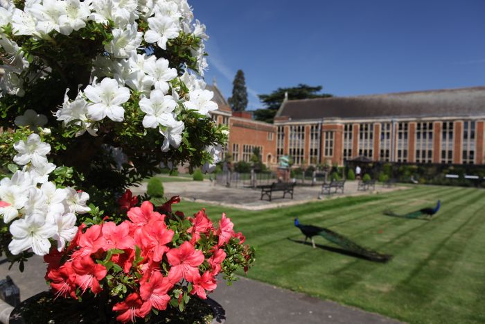 Whitgift Summer School